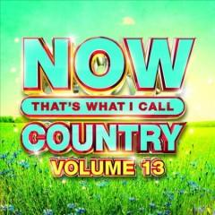 NOW thats what I call country Volume 13