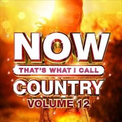 Now thats what I call country Volume 12