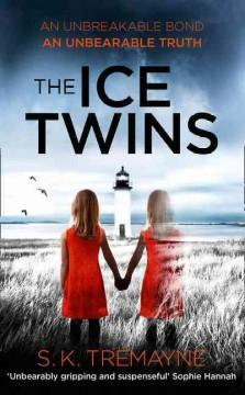 Cover: 'The Ice Twins'