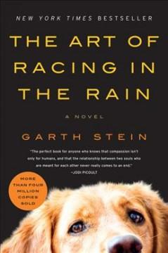 Cover: 'The Art of Racing in the Rain'