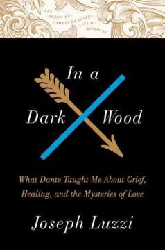 IN A DARK WOOD : WHAT DANTE TAUGHT ME ABOUT GRIEF HEALING AND THE MYSTERIES OF LOVE
