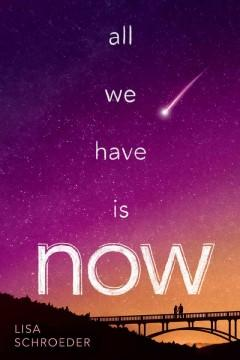 'All We Have Is Now' by Lisa Schroeder