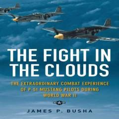 'The Fight in the Clouds'  by  James P. Busha