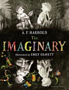 Cover: 'The Imaginary '