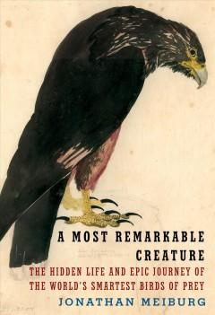 Book Cover: 'A most remarkable creature'