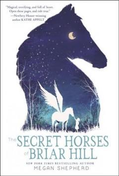 Cover: 'The Secret Horses of Briar Hill'