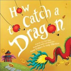Book Cover: 'How to catch a dragon'