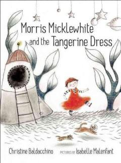 Cover: 'Morris Micklewhite and the Tangerine Dress'
