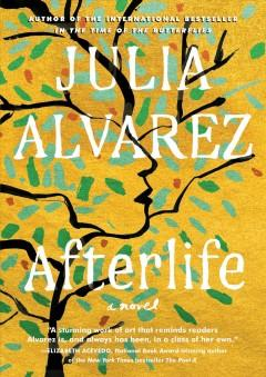 Book Cover: 'Afterlife'