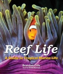'Reef Life: A Guide to Tropical Marine Life'  by  Brandon Cole