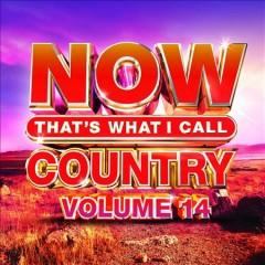 NOW thats what I call country Volume 14